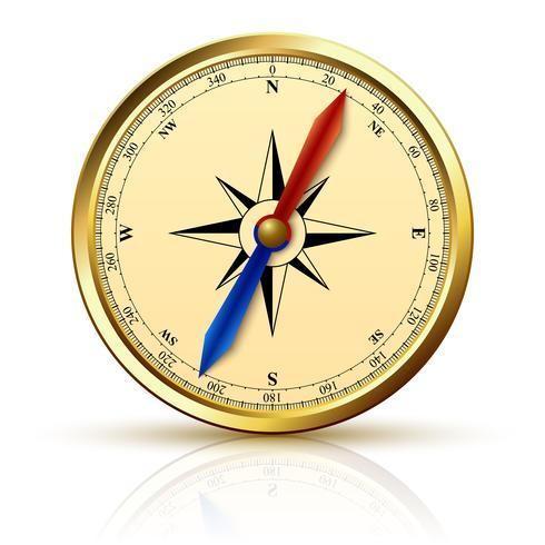 Navigatie kompas gouden embleem