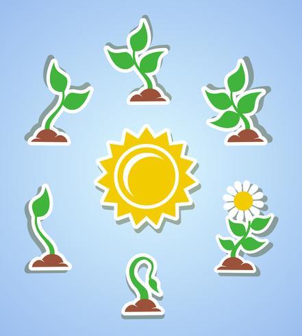 Iconos de progreso de crecimiento vector