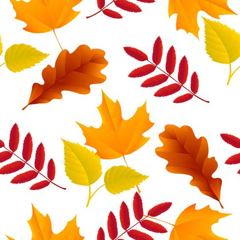 Naadloze herfstbladeren patroon