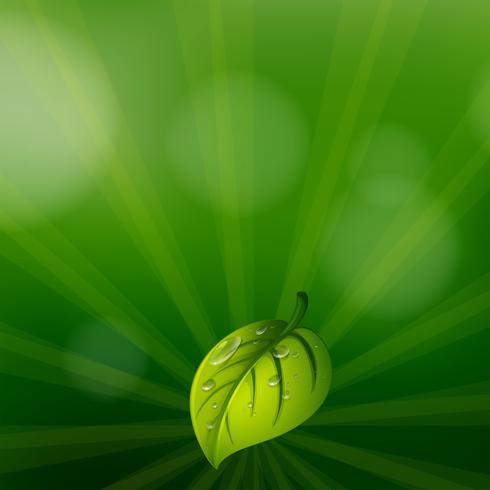 Ett grönt färgat brevpapper med ett blad