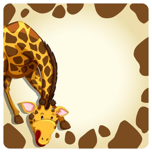 Girafa vetor