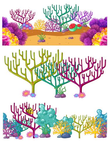 Drie scènes met koraalrif onderwater