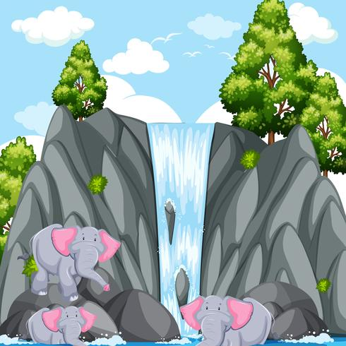 Scene with elephants at the waterfall