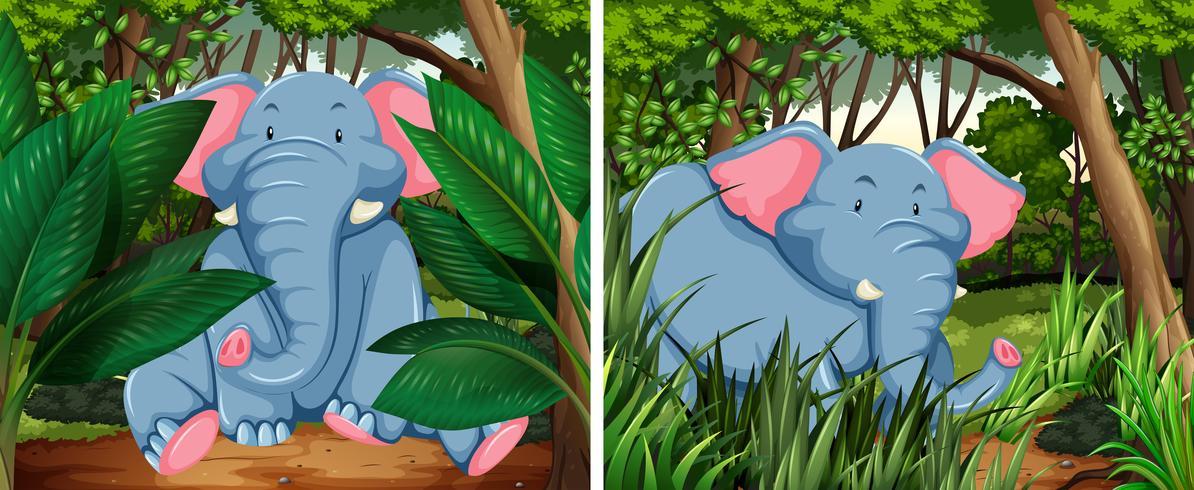 Elefantes grises en el bosque profundo