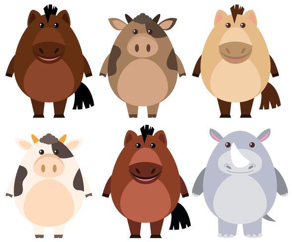 Caballos y vacas con cara alegre.