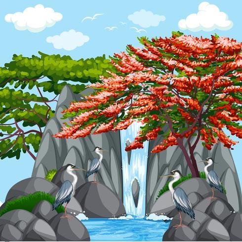 Escena de fondo con pájaros junto a la cascada.