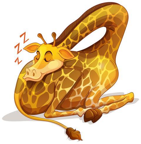Leuke giraffe die alleen slaapt vector