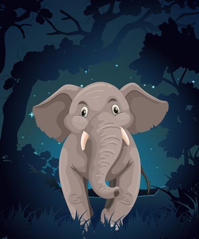 Gullig elefant i skogen på natten