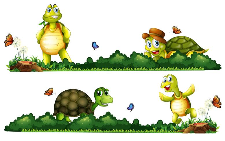 Tartarugas sendo feliz no jardim