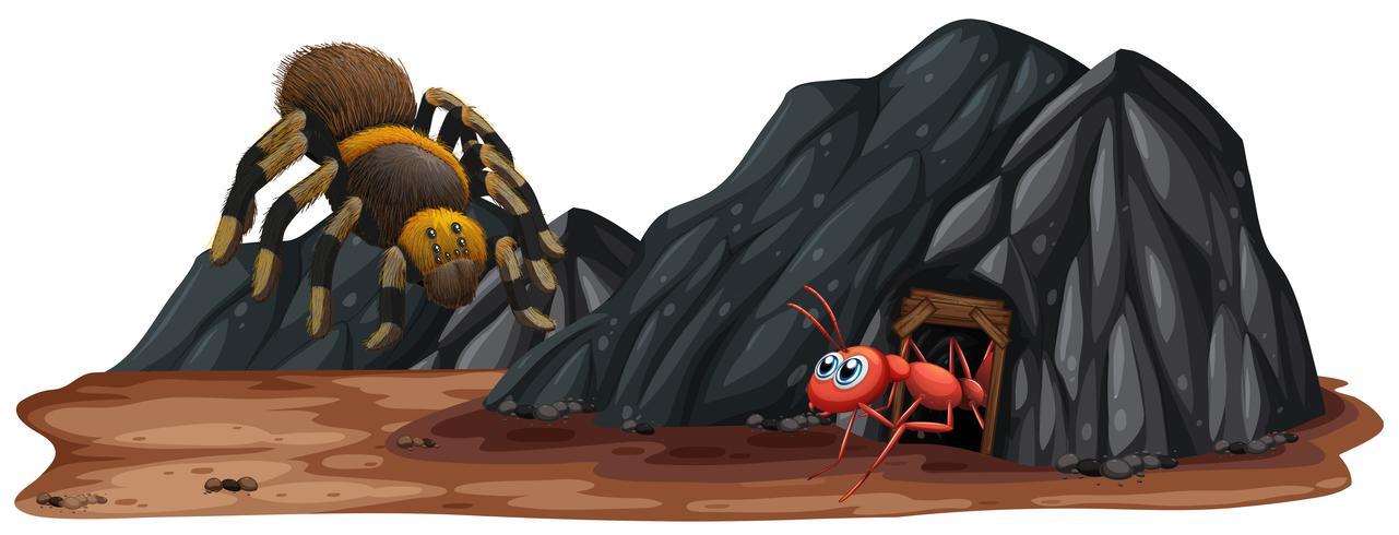 Insect bij de stenen grot vector