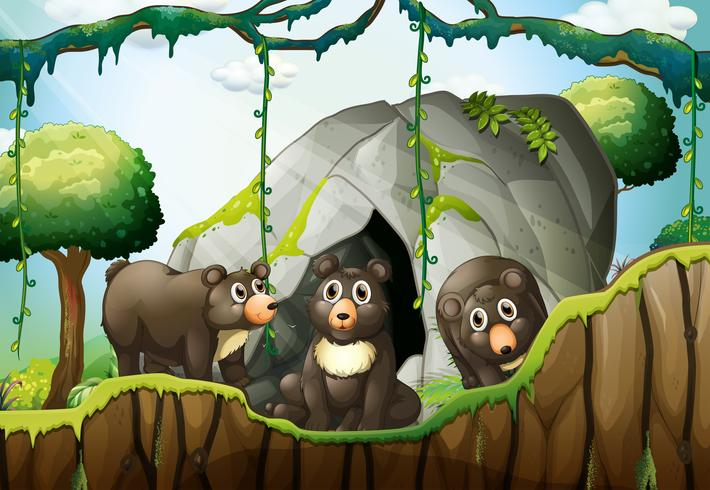 Three little bears by the cave vector
