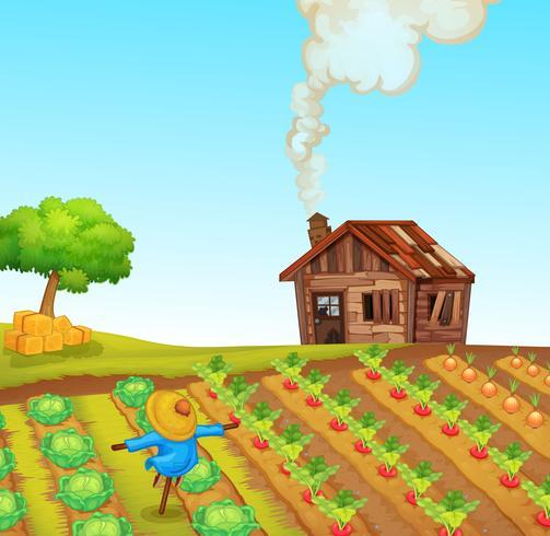 A rural farm landscape vector