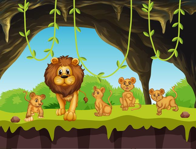 Lejonfamilj i naturen