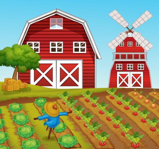 Paesaggio rurale fattoria e fienile vettore