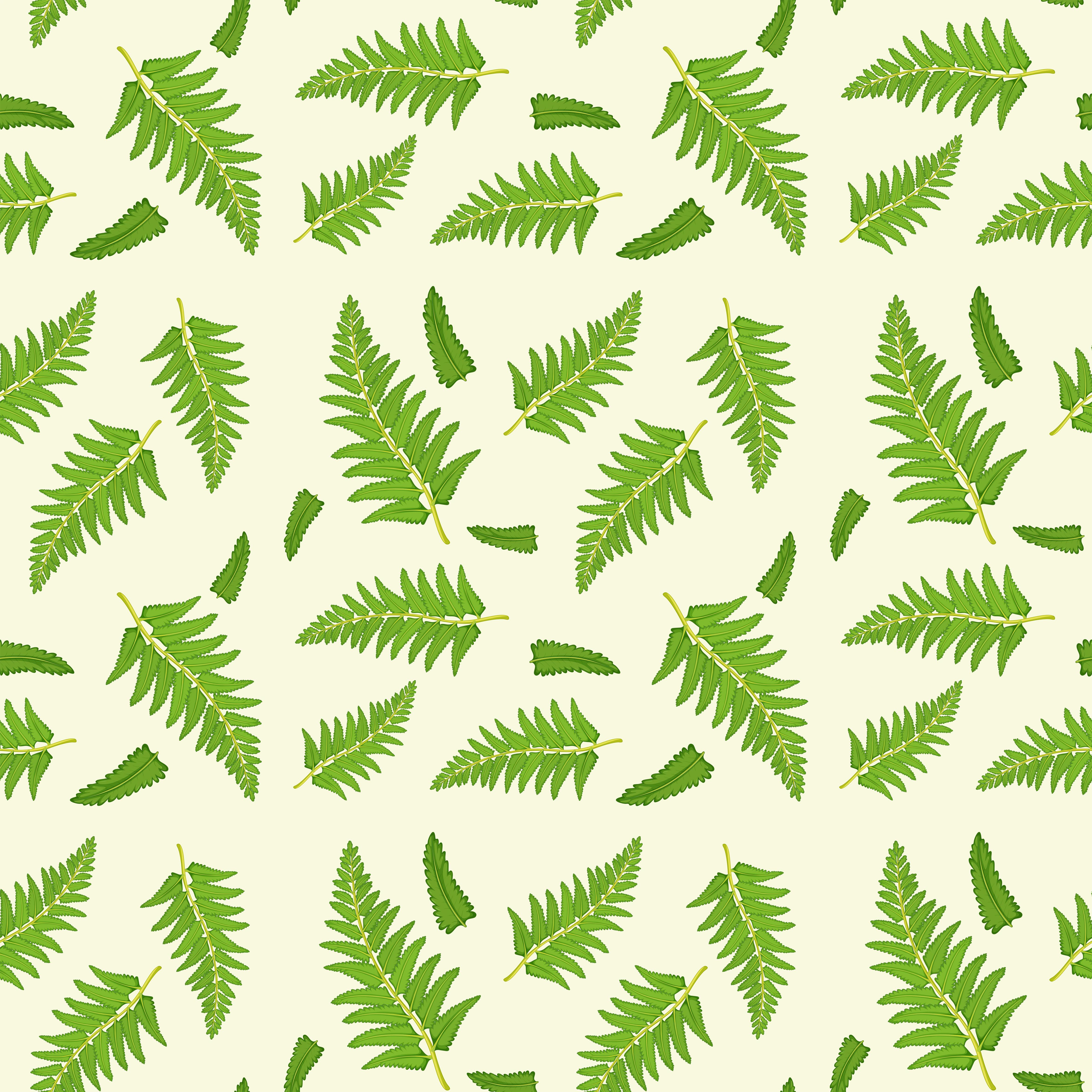 Fern Leaves Free Vector Art