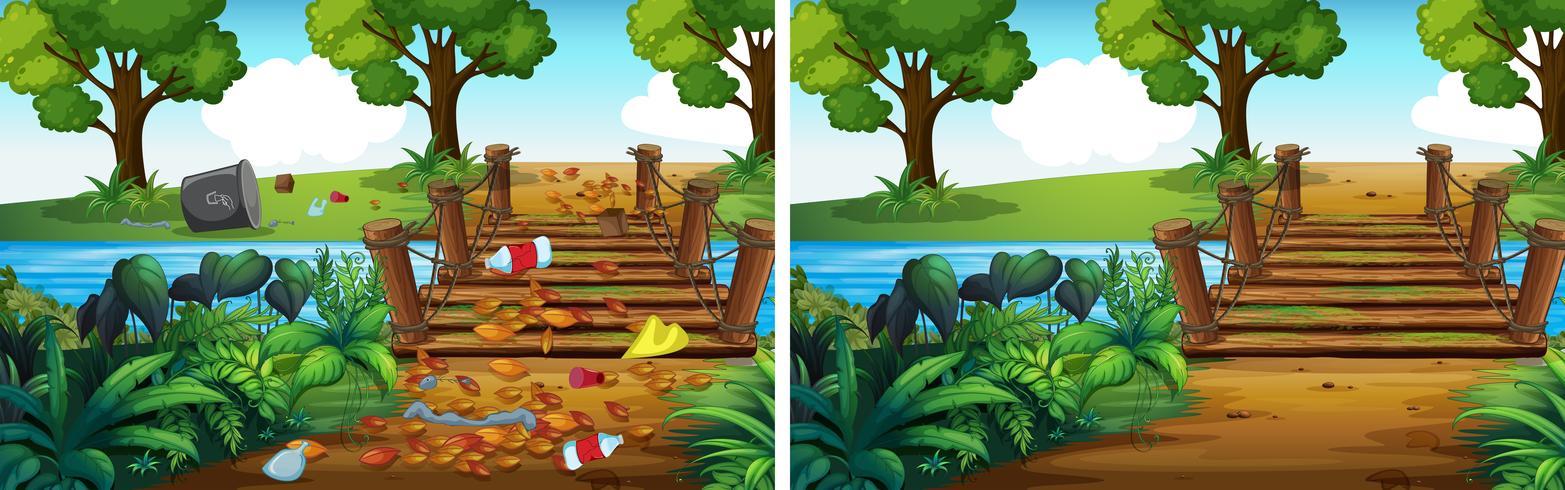 Comparación de bosque sucio y limpio