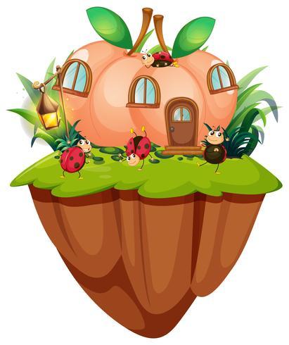Casa de pêssego com joaninhas na ilha
