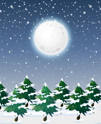 Paisaje de nieve en la noche vector