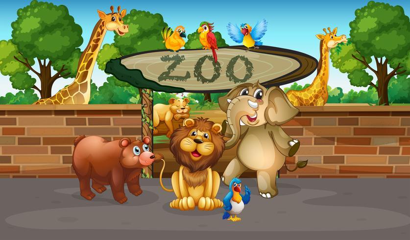 Animales felices en el zoológico.