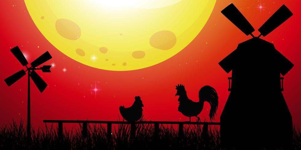 Silhouette scene with chickens on the farm