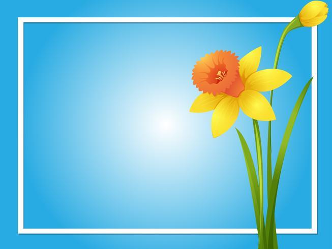 Plantilla de borde con narciso amarillo