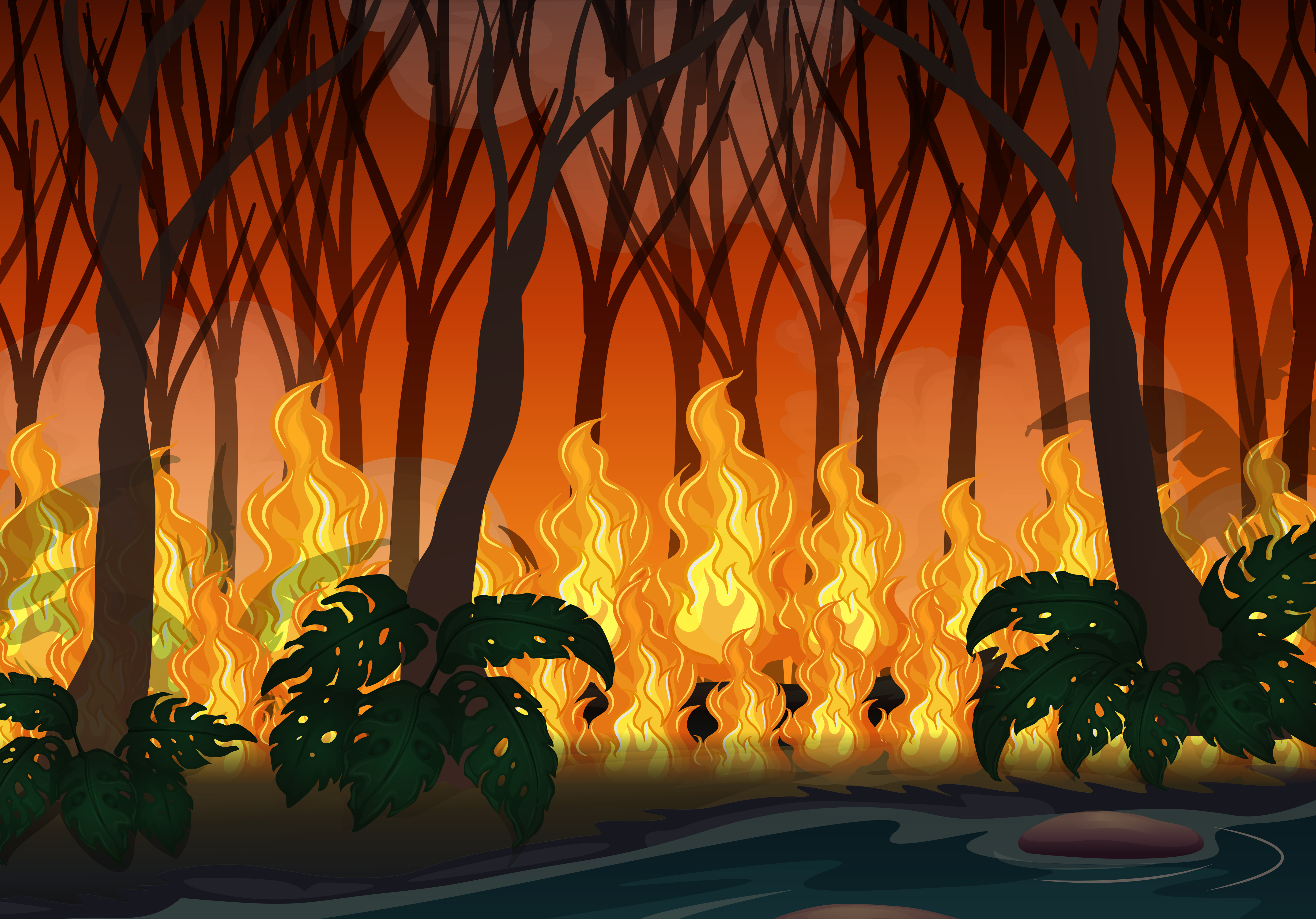wildfire disaster in big forest