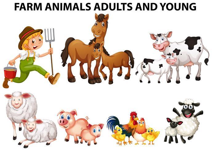 Diferentes tipos de animales de granja con adultos y jóvenes.