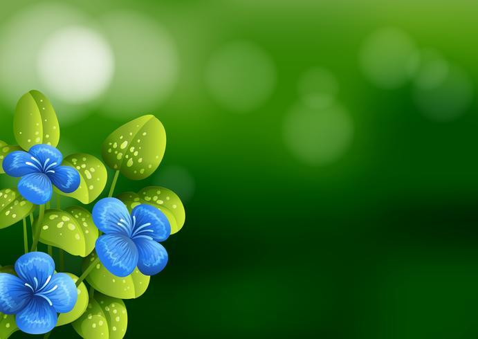Mooie blauwe bloemachtergrond