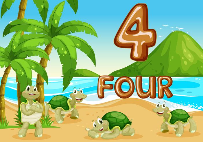 Vier schildpadden op het strand