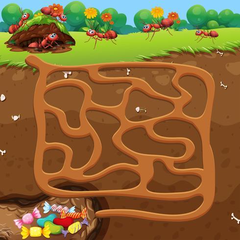 Maze med myror och godis koncept