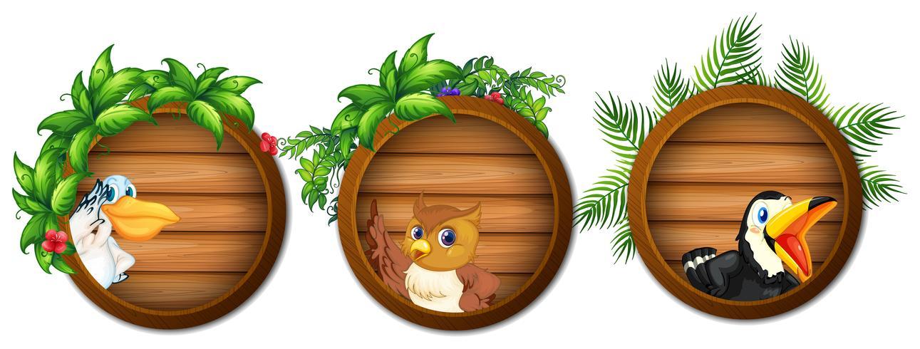 Trois planches de bois avec des oiseaux sauvages