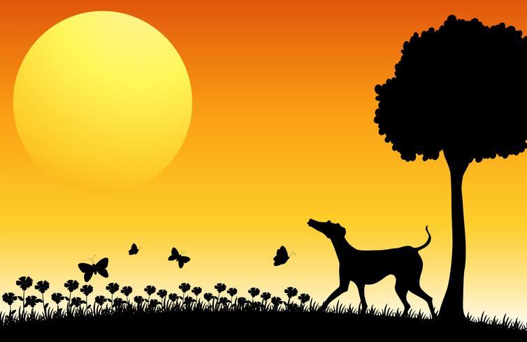 Escena de silueta con perro y mariposas