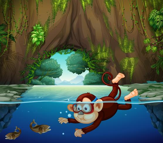 Um macaco mergulhando no rio vetor