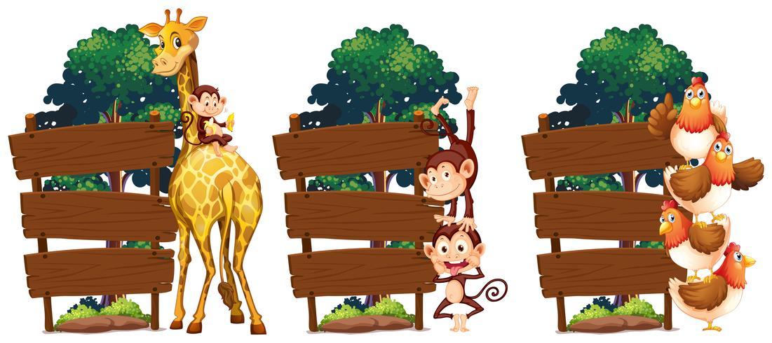 Sinais de madeira com girafa e macacos vetor