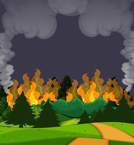 Een wildfire bosscène bij nacht