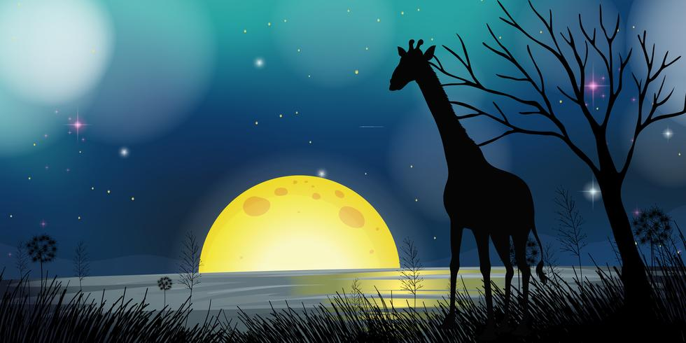 Achtergrondscène met silhouetgiraf bij nacht