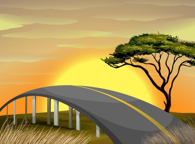 Ponte sobre o campo ao pôr do sol