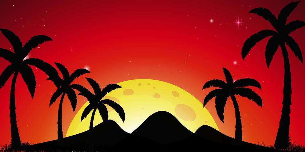Silhouetscène met kokospalmen en rode hemel