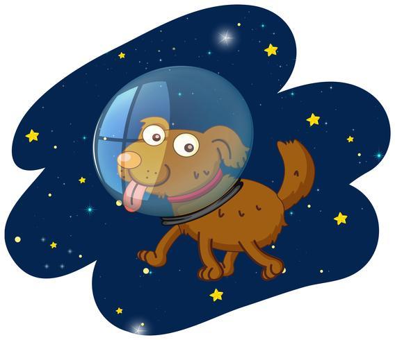 En skuren hund i rymden