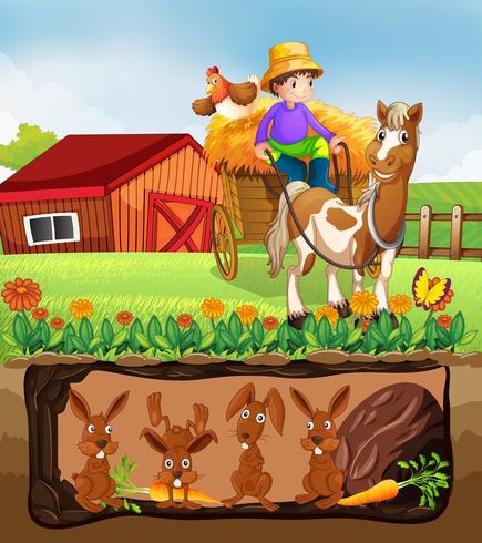 Coniglio che vive nella fattoria sotterranea