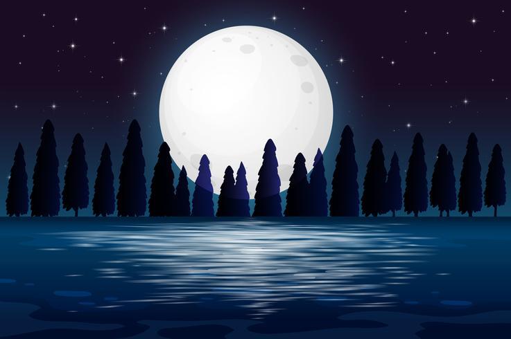 Une silhouette de forêt de nuit