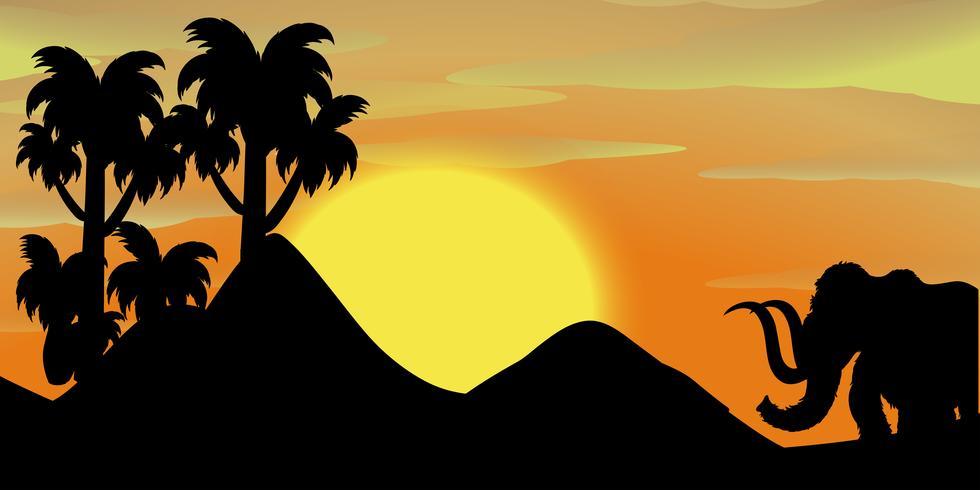Scène de silhouette avec éléphant au coucher du soleil