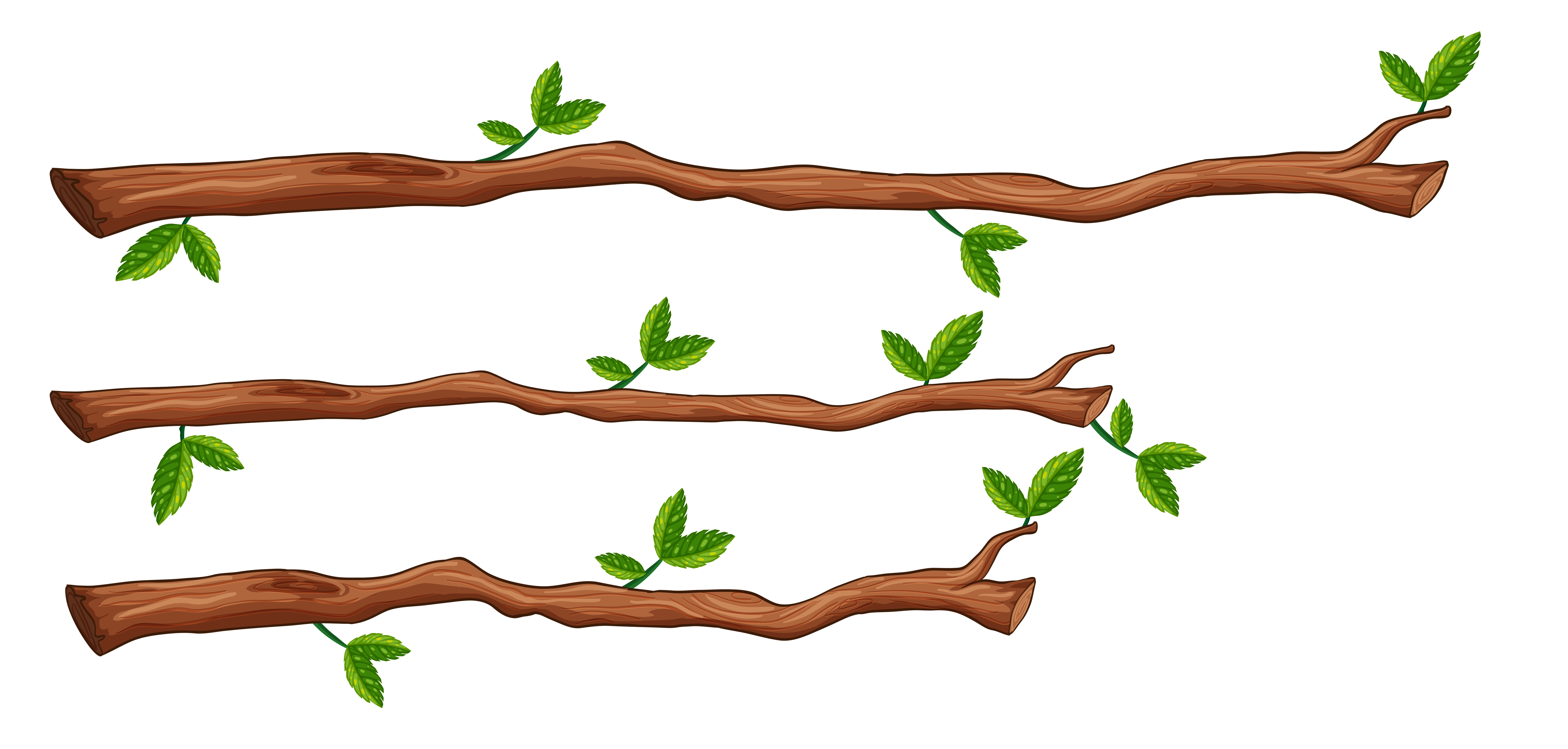 A set of tree branch - Download Free Vectors, Clipart ...