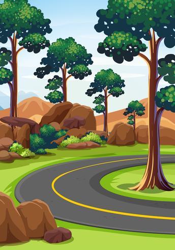 Escena de la naturaleza con carretera y bosque.