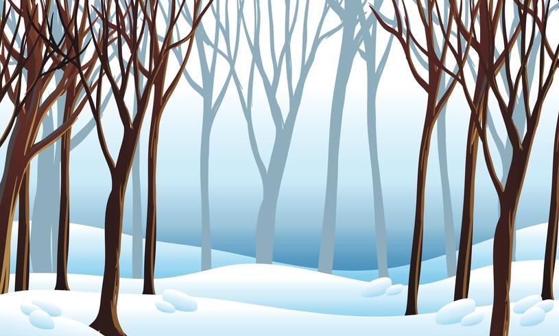 Escena de fondo con nieve en el bosque vector