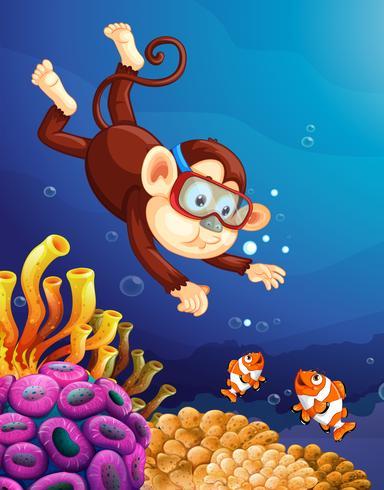 Singe plongeant sous l'océan
