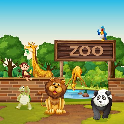 Animales en el zoologico vector