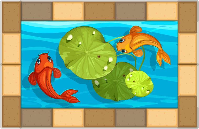 Dos peces nadando en una pequeña piscina vector