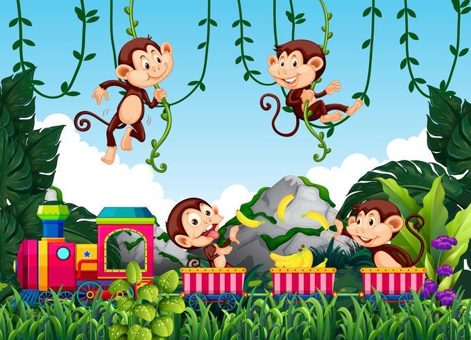Mono en la naturaleza vector