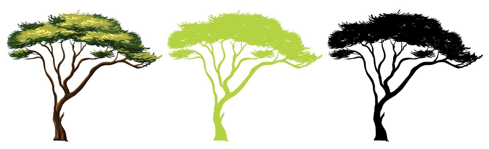 Set di design albero